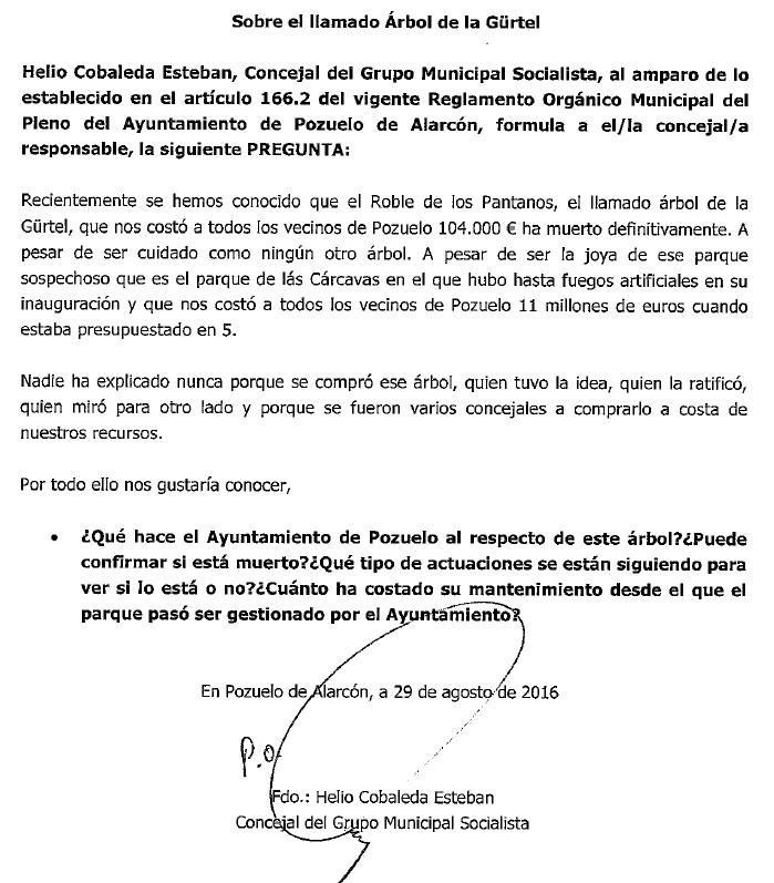 arbol-carcavas-1