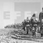 """Última Guerra Colonial de España: La llamada Guerra de Ifni, """"Guerra Secreta o Guerra Olvidada"""" de finales de 1957 y que fue dura, con un total de 852 bajas, de ellas: 198 muertos"""